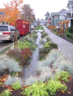 Sustainable Technologies Evaluation Program Step Low Impact Development Stormwater Management