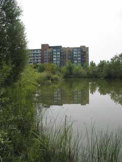 Retrofit pond