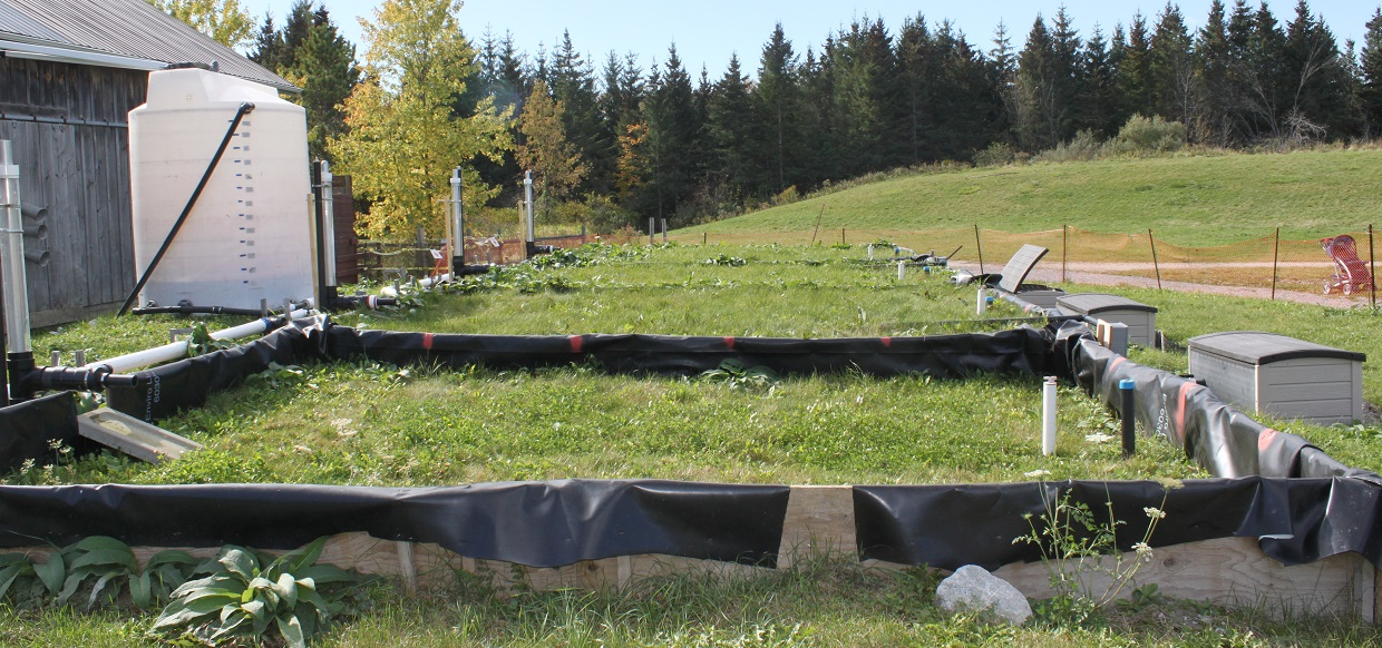 soil test plots at Kortright Centre for Conservation