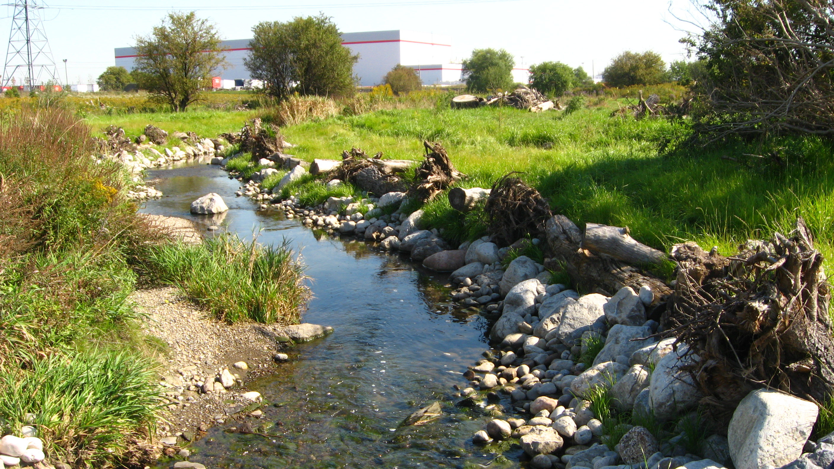 In class: Lessons Learned from Stream Restoration in Other Jurisdictions – Brampton, ON @ Pearson Convention Center