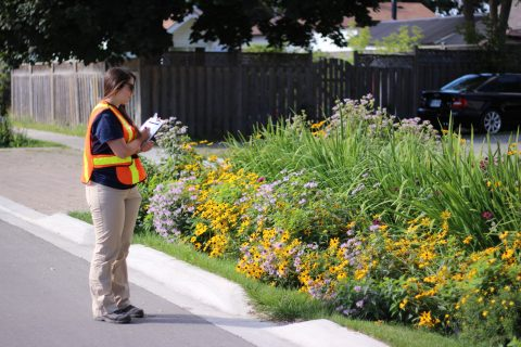 Webinar: Stormwater and LID Field Monitoring Lessons Learned @ Online Webinar