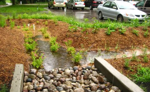 In class: Advanced LID Design: Bioretention Facilities Workshop – Toronto @ TBD