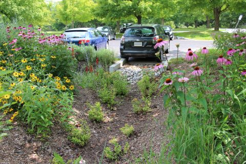 In class: Advanced LID Design: Bioretention Facilities Workshop - Kingston, ON @ INVISTA Centre - Rooms A&B | Kingston | Ontario | Canada